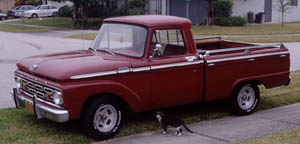 [1964 Ford F100]